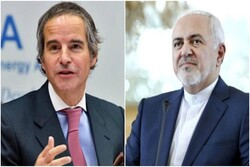 FM Zarif, IAEA chief hold talks in Tehran
