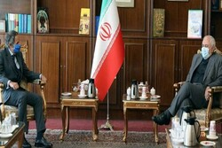 Over 92% of IAEA inspections carried out in Iran: Zarif