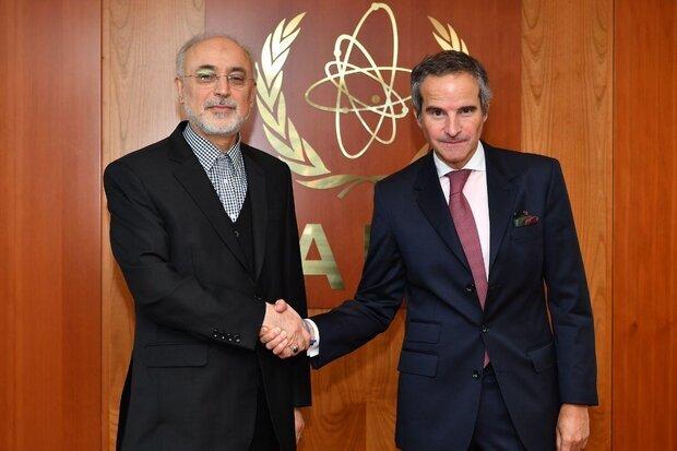 بین الاقوامی جوہری توانائی ایجنسی کے ڈائریکٹر جنرل کی صالحی سے ملاقات
