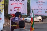 زیرساختهای برق و راه در نخلستانهای دشتستان گسترش یابد