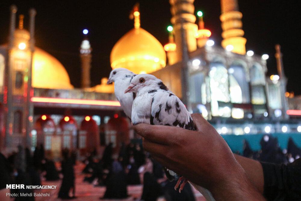 العزاء على أباعبدالله الحسين (ع) في مرقد السيد معصومة (ع) / صور