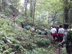 ۹ گردشگر گمشده در جنگل بندرگز پیدا شدند