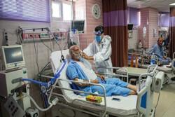 ۲۹۴ بیمار کرونایی در بیمارستانهای قزوین بستری هستند