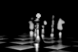 سرپرست نایب رئیسی فدراسیون شطرنج منصوب شد