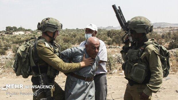 İsrail güçlerinden Filistinli yaşlı adama 'Floyd' şiddeti