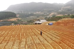 FAO urges fight against hunger,climate change in Asia-Pacific