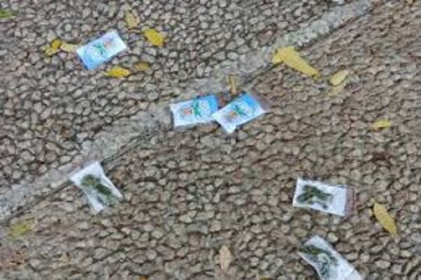 VIDEO: Drone drops dozen bags of marijuana over Tel Aviv sky