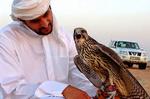پروازی که سهم قاچاقچیان شد/ ردپای تجارت پرندگان تا حاشیه خلیجفارس