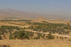 جذب سرمایهگذاربومی برای احداث بوستان فرامنطقهای اکباتان درهمدان