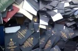 آموزش و پرورش بوشهر ادعای فروش پایاننامهها را رد کرد