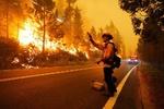 تلفات آتش سوزی های آمریکا به ۱۵ کشته و ۵۰۰ هزار بی خانمان رسید