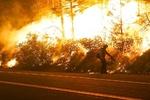 شمار قربانیان آتش سوزی های آمریکا به ۳۳ نفر رسید/ هشدار درباره سرایت حریق به سایر ایالت ها
