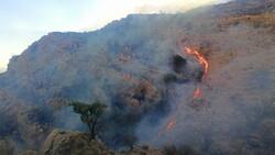 مهار آتش سوزی قلعه سفید نورآباد ممسنی