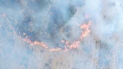آتشسوزی اراضی کشاورزی حاشیه تالاب میانگران پایان یافت
