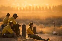 ABD'deki orman yangınları Covid-19'un yayılmasında etken olabilir