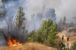 عملیات اطفا حریق در توسکستان به روز سوم رسید/تلاش ها ادامه دارد