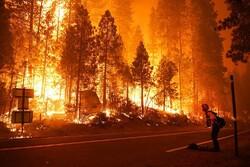 کیلیفورنیا کے جنگلات میں لگی آگ نے 22 ہزآر ایکڑ رقبہ کو اپنی لپیٹ میں لے لیا