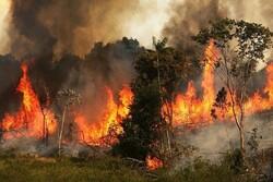 آتش روستای لات قزوین به عرصه های جنگلی گیلان نفوذ نکرد