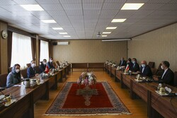 Swiss FM hails fruitful talk with Iranian foreign minister