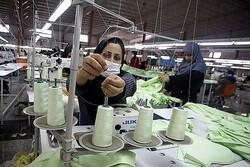 نرخ اشتغال زنان هرمزگان ۲.۵ درصد از میانگین کشوری کمتر است