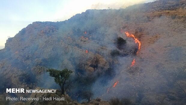 Extinguish of wildfire of Qaleh Sefid in S Iran