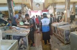 وضعیت بهداشتی مراکز عرضهکننده ماهی و میگو بوشهر نظارت میشود