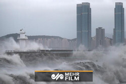 VIDEO: Typhoon Haishen hits South Korea after striking Japan