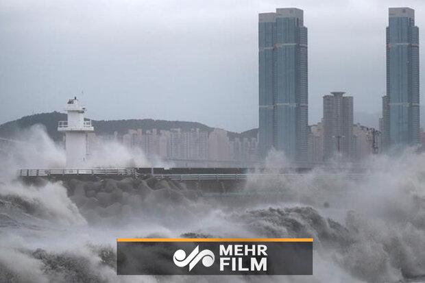 VIDEO: Typhoon Haishen hits South Korea after striking Japan