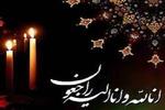 دکتر صادق ملک شهمیرزادی درگذشت