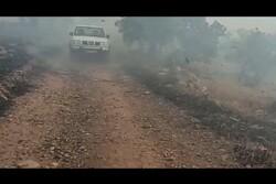 آتشسوزی منطقه حفاظت شده دنا/ نبرد با باد و آتش ادامه دارد