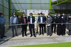 سالن ورزشی روباز دانشگاه اسفراین افتتاح شد