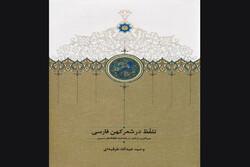 کتاب «تلفظ در شهر کهن فارسی» منتشر شد