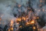 امریکہ میں پارک میں لگنے والی آگ سے قریبی آبادی کو خطرہ لاحق