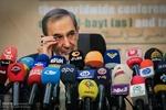 مستشار قائد الثورة الإسلامية يؤكد ضرورة عدم الاعتماد على نتيجة الانتخابات الأمريكية