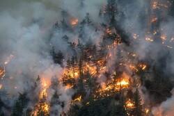 ۵ هکتار از  مراتع «سیبک»  فریدونشهر در آتش سوخت