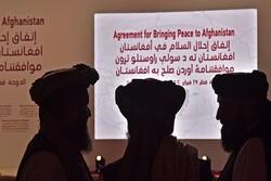 توضیح یک عضو طالبان درباره حقوق شیعیان در مذاکرات بین افغانی