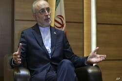 Salehi names countering US as path to protect multilateralism