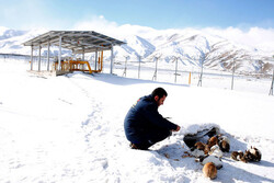 Gas industry mobilized for sustained supply in winter