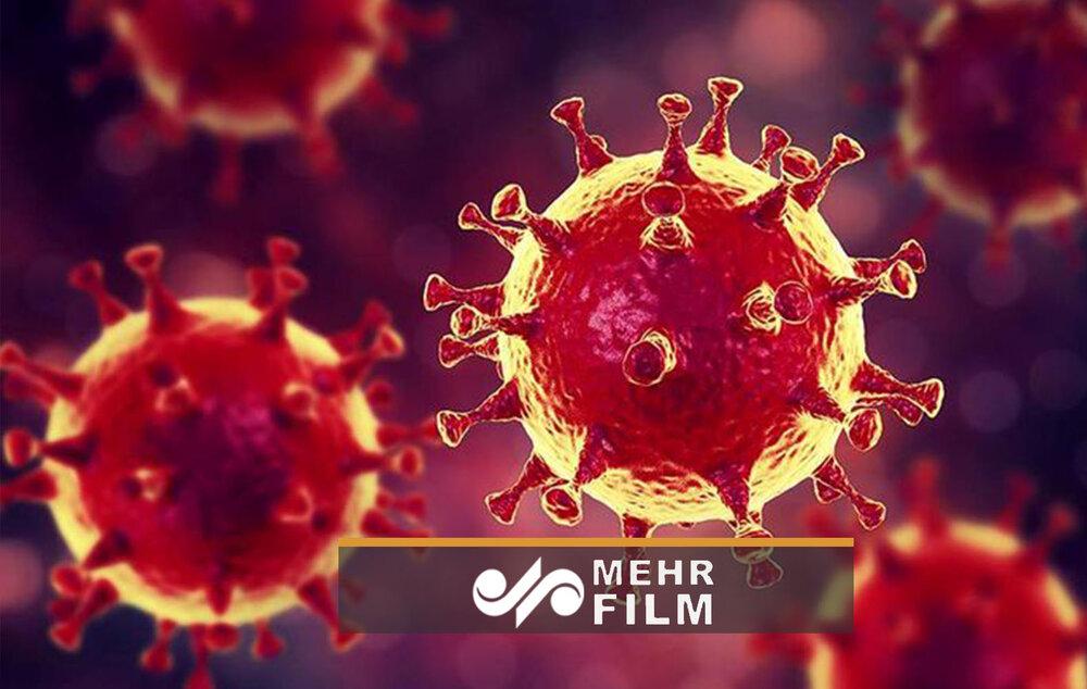 تفاوت های ابتلا به کرونا با سرماخوردگی و آنفلوآنزا