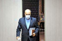 مسعود سلطانیفر: ریال و دلاری از اعتبار و ارز دولتی به سرخابیها ندادیم