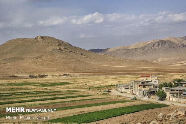 همجواری زمین های کشاورزی روستا و منازل مسکونی