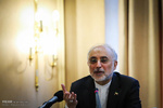 صالحي: المنظمات الدولیة تتعرض لضغوط سیاسیة من قبل بعض الدول