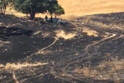 آتش سوزی جنگل های دمچنار بویراحمد مهار شد