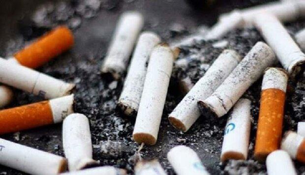استقرار مخازن ویژه فیلتر سیگار در طولانی ترین خیابان خاورمیانه