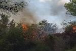 آتش افروزی گسترده صهیونیستها در جنوب لبنان