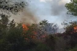 العدو الصهيوني يحرق أكثر من 40 دونما من الأراضي جنوبي لبنان