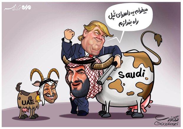 US efforts to milk UAE, Saudi Arabia