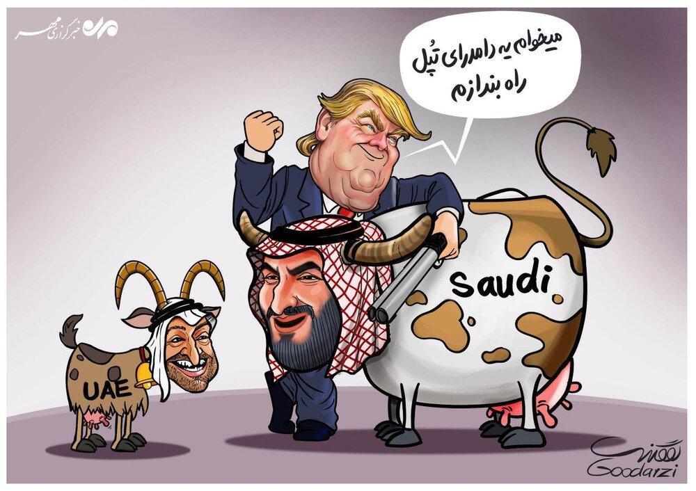 US efforts to take advantage of UAE, Saudi Arabia