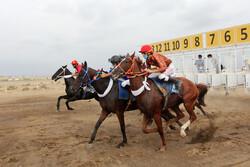 İran'daki at yarışından fotoğraflar