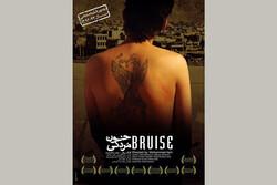 مستند لات های شیراز پر بازدید شد/ اعلام نشدن آمار مخاطب «خون مردگی»